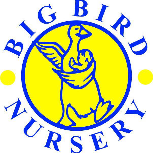 big-bird-nursery