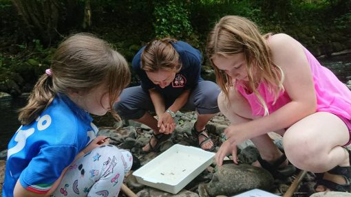 River Dipping at Forest School